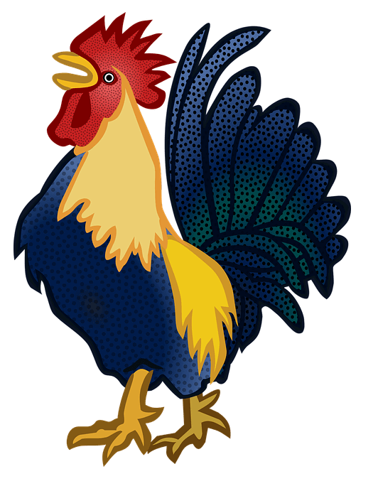 Illustration of a rooster